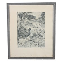 Axel Osterberg, Pheasant Etching